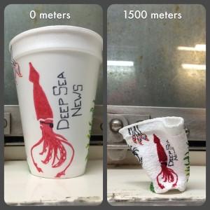 Figure 1: Styrofoam Cup Shrunk By Pressure 150Figure 1: Styrofoam Cup Shrunk By Pressure 1500 Meters Underwater.0 Meters Underwater.