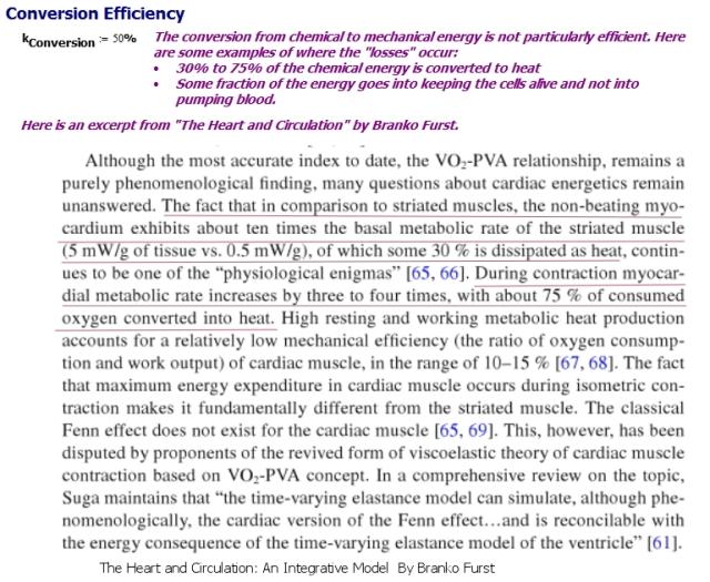 Figure 2: Heart Energy Conversion Efficiency.
