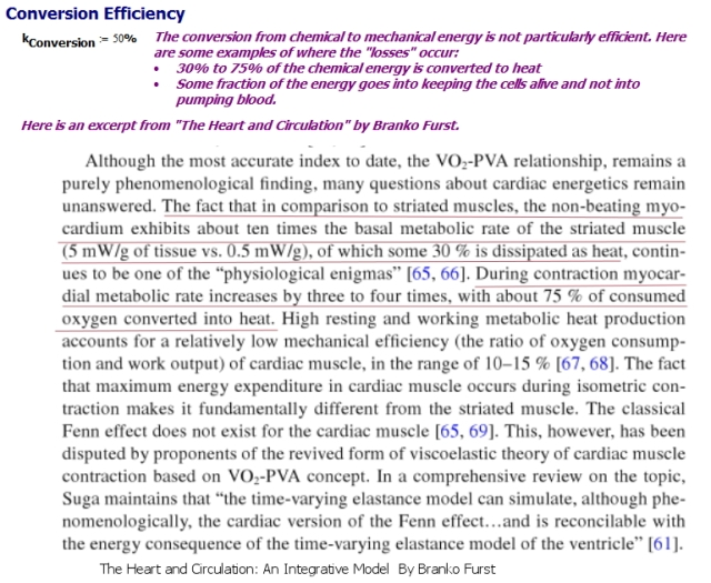 Figure 2: Heart Energy Conversion Efficiency.